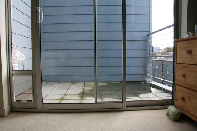 Drzwi dla psa wychodzące na balkon