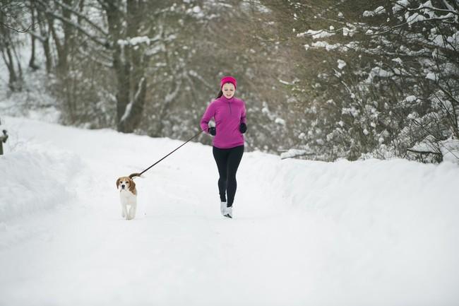 Biaganie z psem beaglem