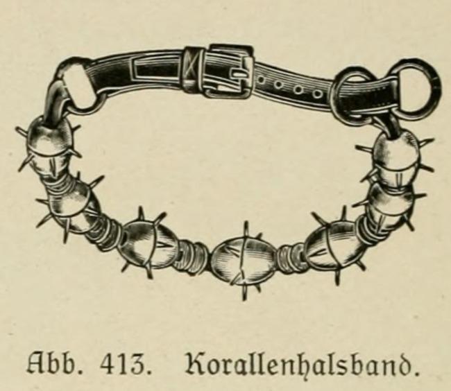Koralowy naszyjnik kolczatka dla psa