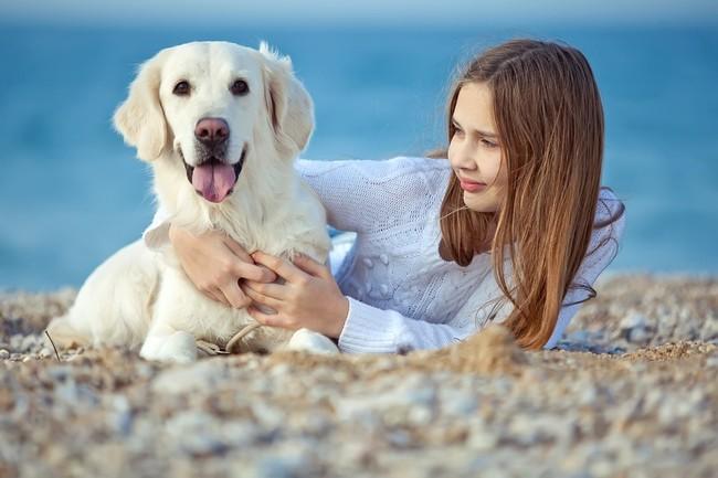 jak wybrac psa dla poczatkujacego wlasciciela
