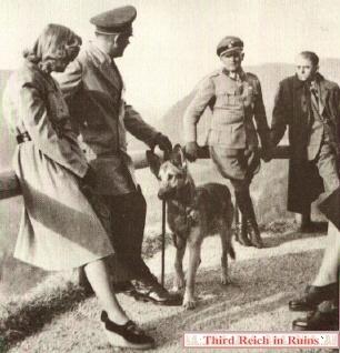 BLONDI pies Hitlera