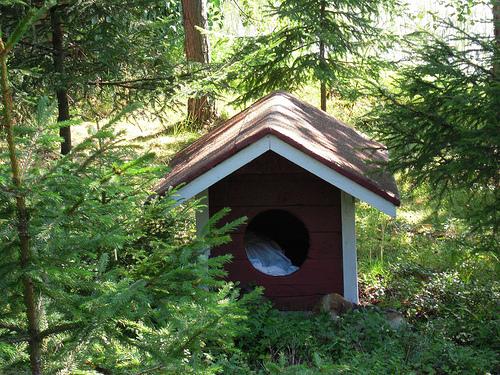Buda dla psa z dachem dwuspadowym