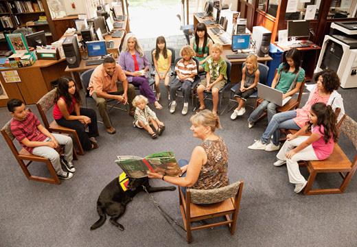 Trapia z udziałem psa w szkole