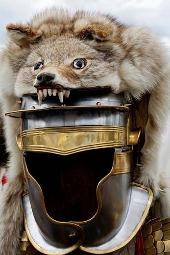 Hełm rzymskiego chorążego z futra wilka