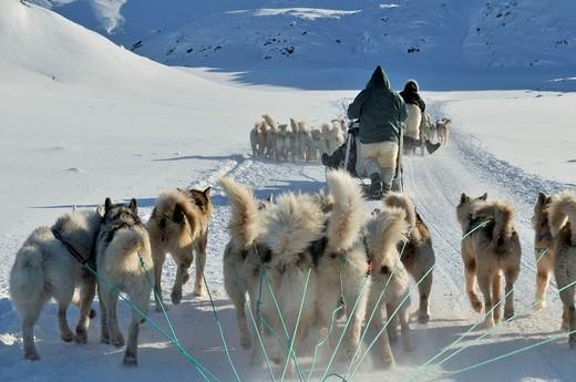 Grenlandia wyruszajacy Inuici na polowanie