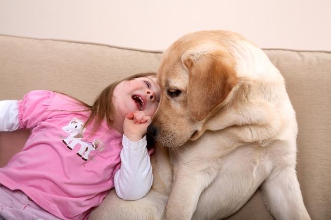 Pies i dziecko autystyczne