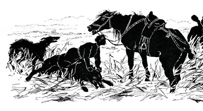 Polowanie z chartami na wilka