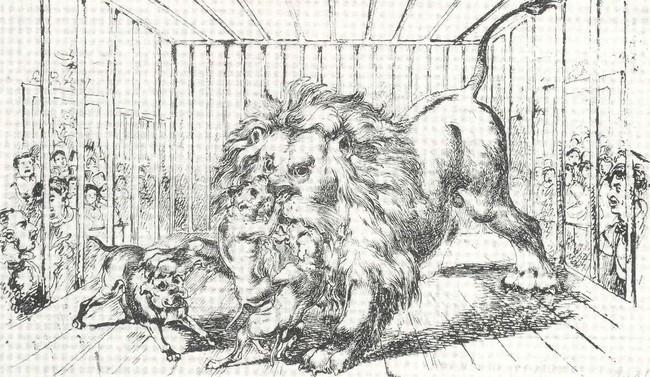 Historia psich walk - waka psów z lwem