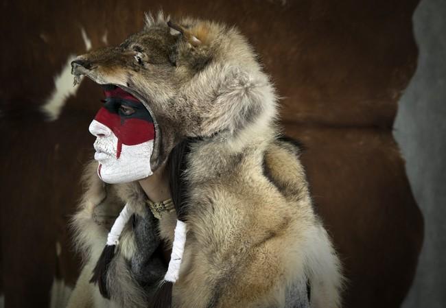 Wilk w wierzeniach indian