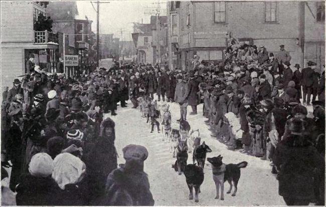Pierwszy wyścig psów na Alasce