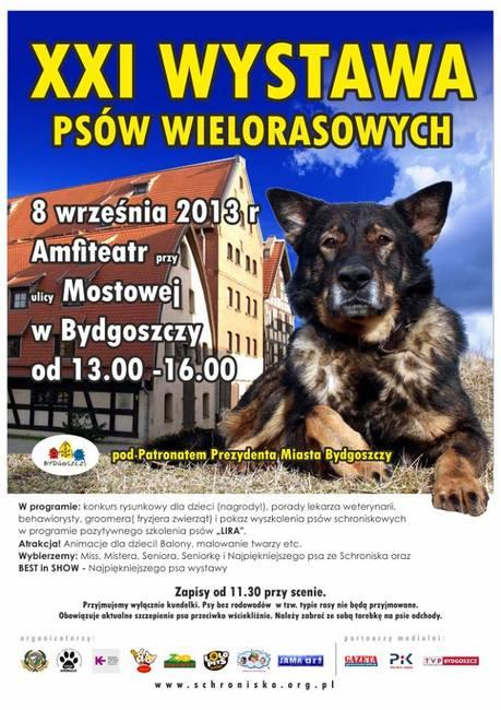 wystawa psów wielorasowych w Bydgoszczy