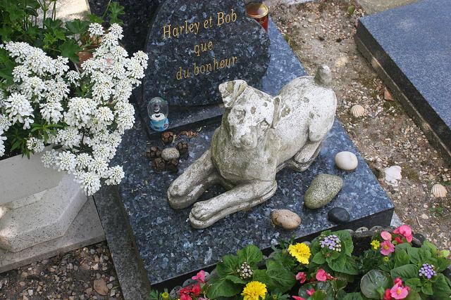 Pomnik psa na cmentarzu Cimetiere des Chiens