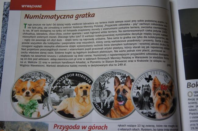 Jedna ze stron miesięcznika Przyjaciel pies, grudniowego 2013