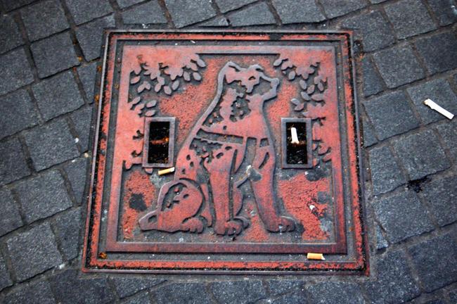 Płyta chodnikowa ku pamieci psa Hachiko