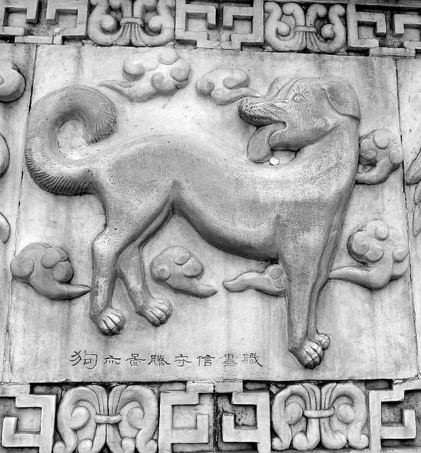 Horoskop chiński symbol psa