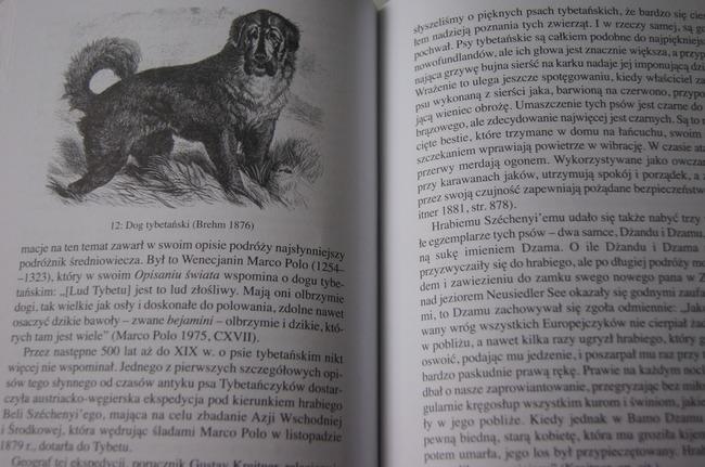 Książka Człowiek i pies historia przyjaźni Erhard Oeser