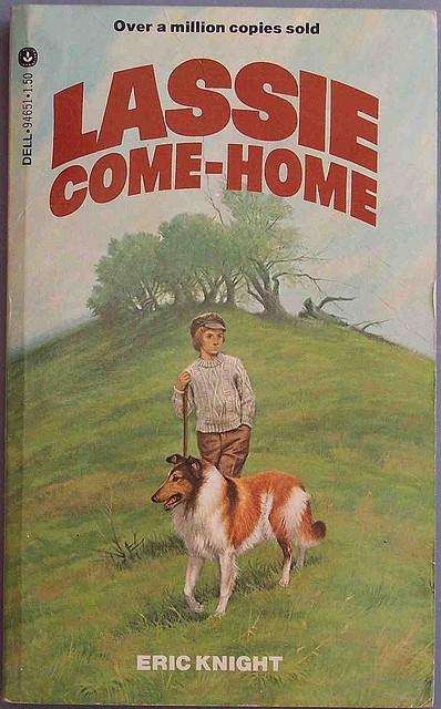 Książka Lassie wróć wersja angielska