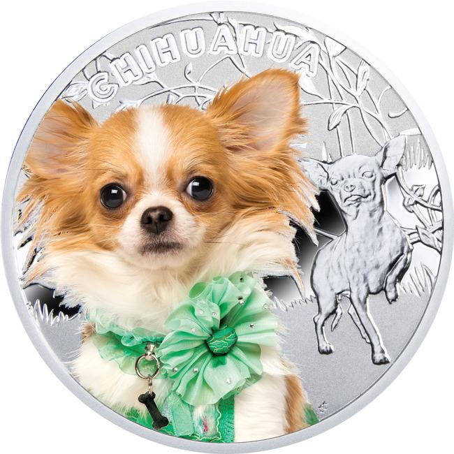 Moneta z wizerunkiem psa Chihuahua