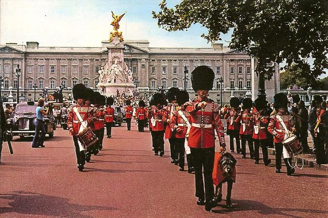 Parada regimentu Gwardii irlandzkiej i maskotki