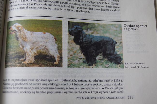 ksiązka Psy rasowe w Polsce E.Frankiewicza