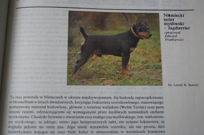 Ksiązka opisujaca rasy psów