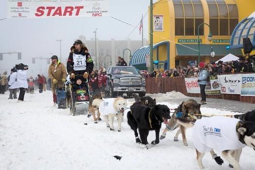 Iditarod największy wyścig psich zaprzęgów