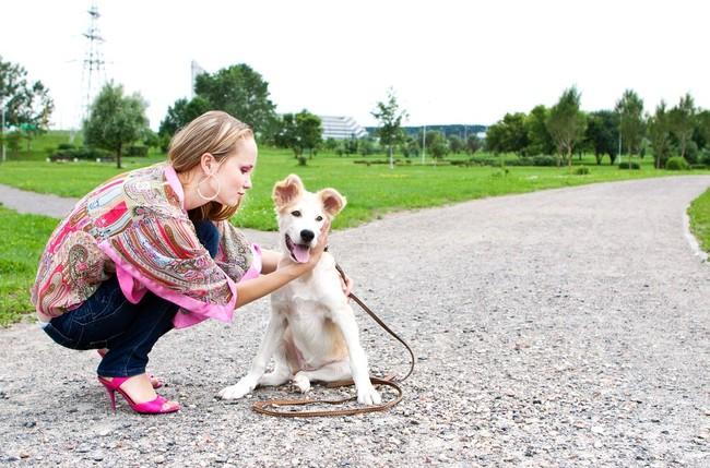 Jak powinny wyglądać pierwsze spacery z psem
