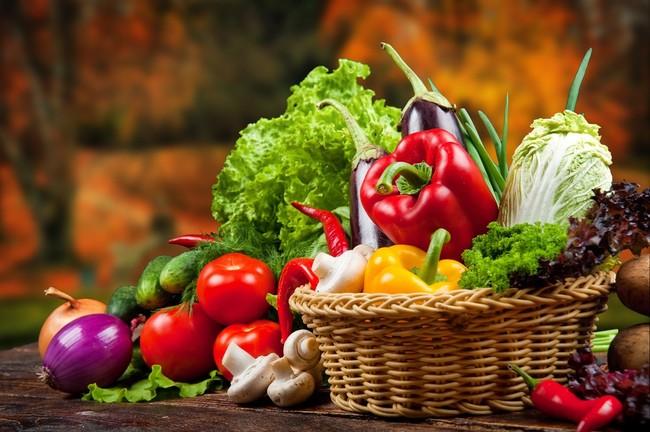 warzywa i owoce w diecie psa