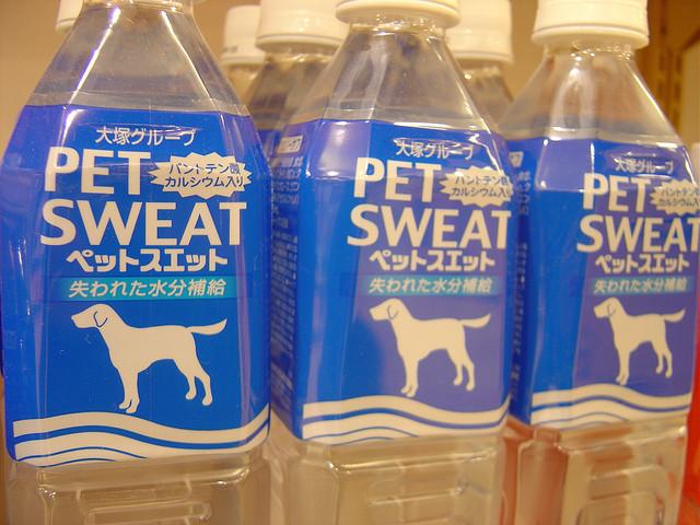 Woda dla psów w butelkach