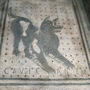 Psy w Rzymie