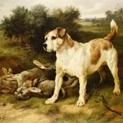 Pies i zające