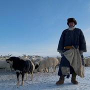 Pasterz z psem