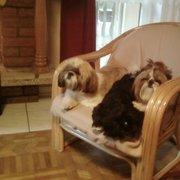 Axel,Gigi,Teri