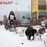 Iditarod 2013