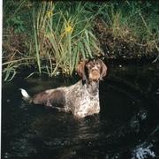 Sonia w wodzie