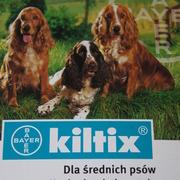 Obroża KILTIX