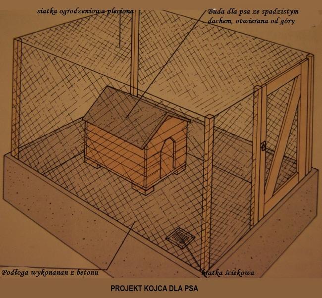 Niesamowite Jak zbudować kojec dla psa? TB68